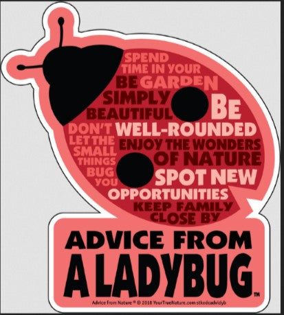 Advice from a Ladybug - Die Cut Outline Sticker