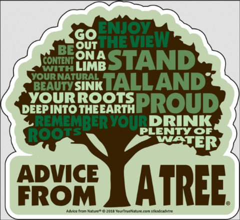 Advice from a Tree - Die Cut Outline Sticker