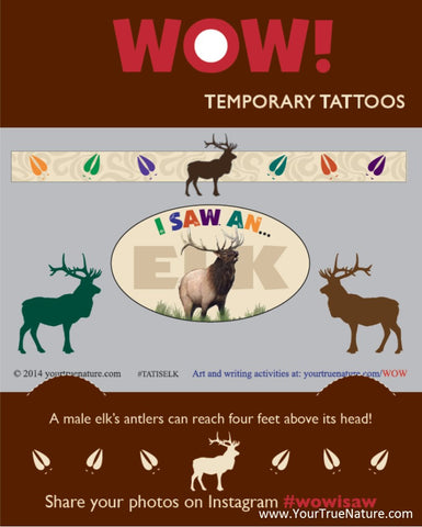 I SAW an Elk Temporary Tattoos