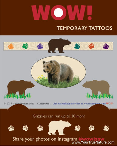 I SAW a Grizzly Temporary Tattoos