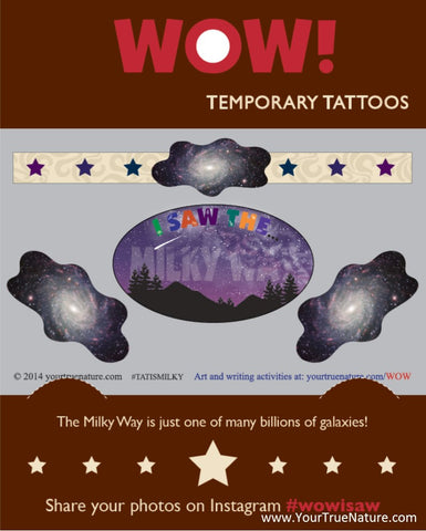 I SAW the Milky Way Temporary Tattoos
