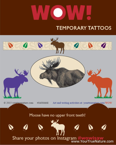 I SAW a Moose Temporary Tattoos