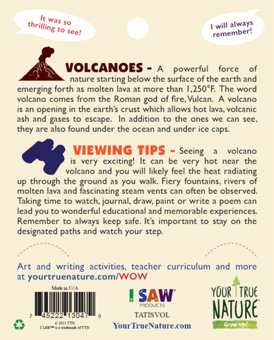 I SAW the Volcano Temporary Tattoos