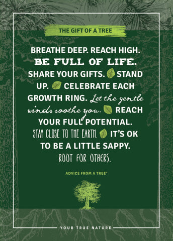 All Occasion Tree Planting Card