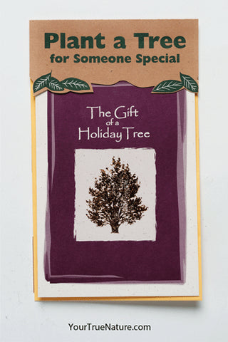 Holiday Tree Planting Card