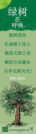Advice from a Tree - Translated in Chinese - Laminated Bookmark