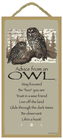 Advice from an Owl Hanging Wood Sign