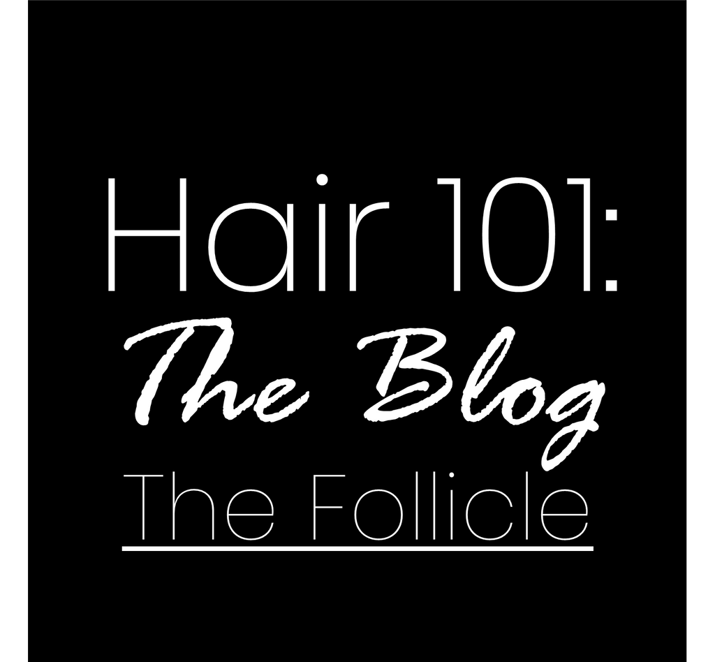 Hair 101: The Follicle