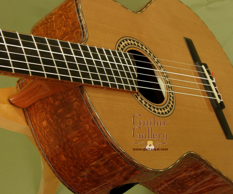 Nylon String CrossOver Guitars at Guitar Gallery