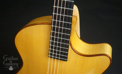D'Ambrosio archtop guitar for Julian Lage