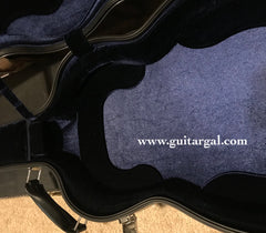 Dion guitar Vises case interior