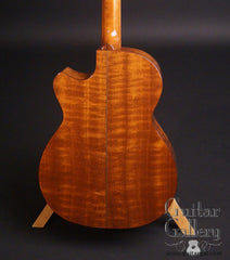 Sexauer FT-15-C guitar figured Sapele back