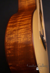 Sexauer FT-15-C guitar side detail