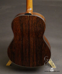 Greenfield G1 guitar Amazon rosewood back