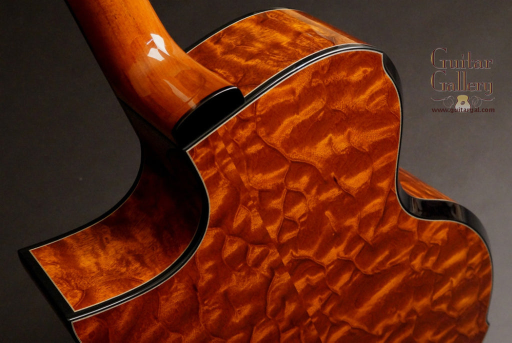 Greenfield guitar The Tree Mahogany back