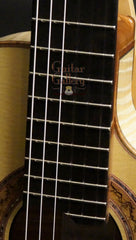 Greenfield jazz guitar fretboard