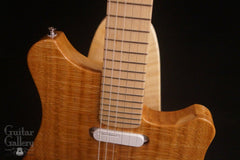 New Complexity Harmonic Master Guitar at Guitar Gallery