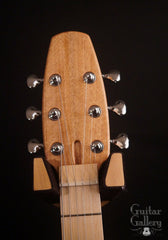 New Complexity Harmonic Master Guitar headstock
