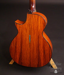 TreeHouse OMZ guitar cocobolo back