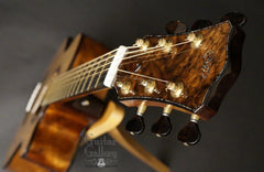 Laurie Williams Signature Kiwi Guitar headstock