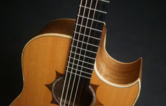 Langejans W-6 guitar at Guitar Gallery