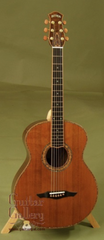Petros Guitar: Used Salvaged Redwood Top Tunnel 13