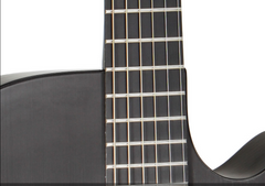 Rainsong carbon glass hybrid guitar