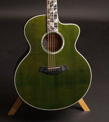 Taylor RNSM LTD 615ce Guitar close
