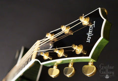 Taylor RNSM LTD 615ce Guitar headstock