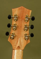 T Drew Heinonen guitar headstock back