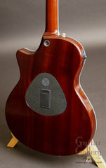 Taylor T5 custom guitar sapele back