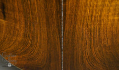 Tippin Forte guitar Brazilian rosewood back