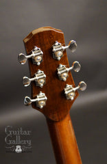 Tippin Forte guitar headstock back
