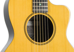 RainSong V-PA1100NS parlor guitar for sale
