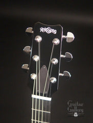 Rainsong Vintage series guitar headstock