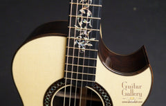 Applegate guitar