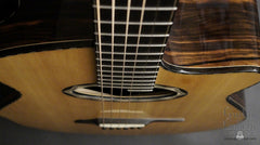 Beardsell 3D-V guitar