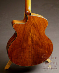 Beardsell 2D guitar walnut back