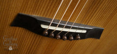 Bent Twig Sapling guitar ebony bridge