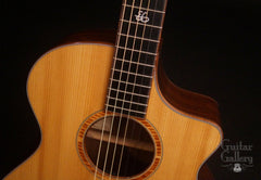 Breedlove Ed Gerhard Signature Guitar at Guitar Gallery