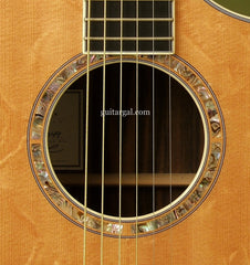 Breedlove C15e custom guitar rosette