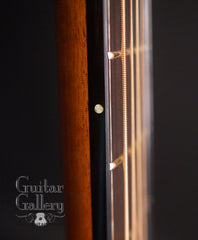 Brondel D1 guitar side dots