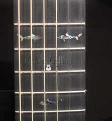 Rainsong CO-WS1000N2 guitar fretboard