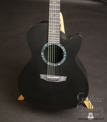 Rainsong CO-WS1000N2 guitar at Guitar Gallery