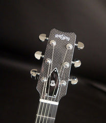 Rainsong CO-WS1000N2 guitar headstock
