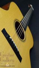 Martin Custom Shop Woody Mann Guitar