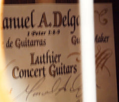 Delgado crossover guitar label
