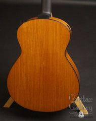 Dion guitar mahogany back