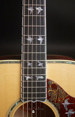 Gibson Doves in Flight guitar fretboard