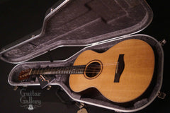 Elysian guitar inside Hiscox case